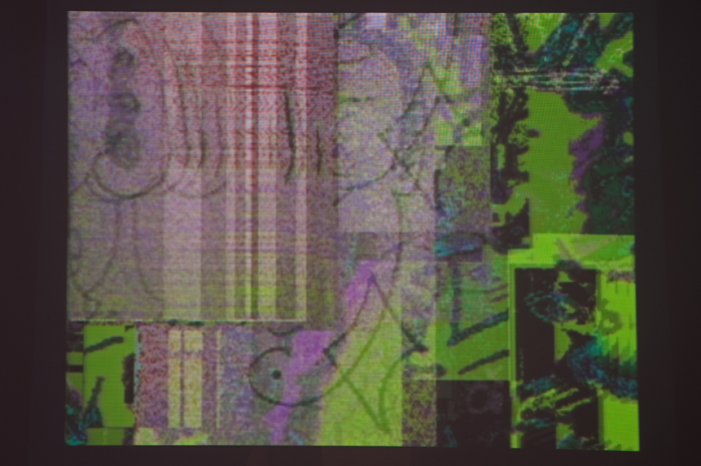 Legrice230112SC12