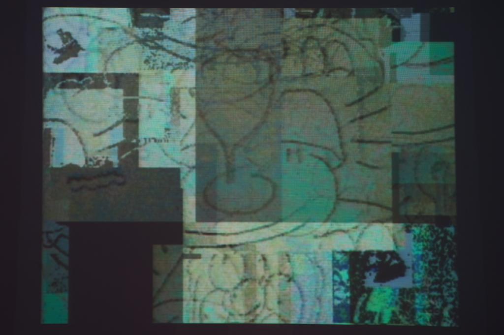 Legrice230112SC13
