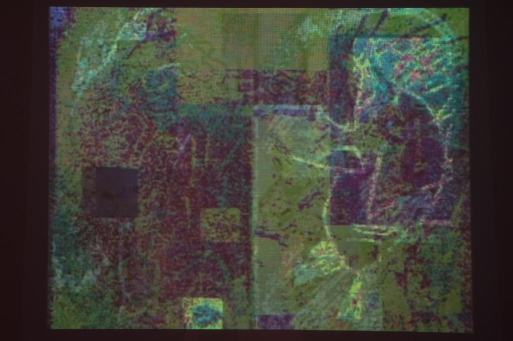 Legrice230112SC14