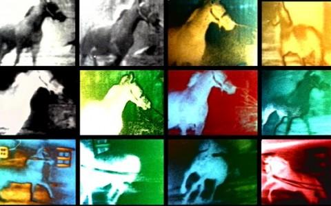 Exposition Le Temps des Images - Berlin Horse - Malcolm Le Grice