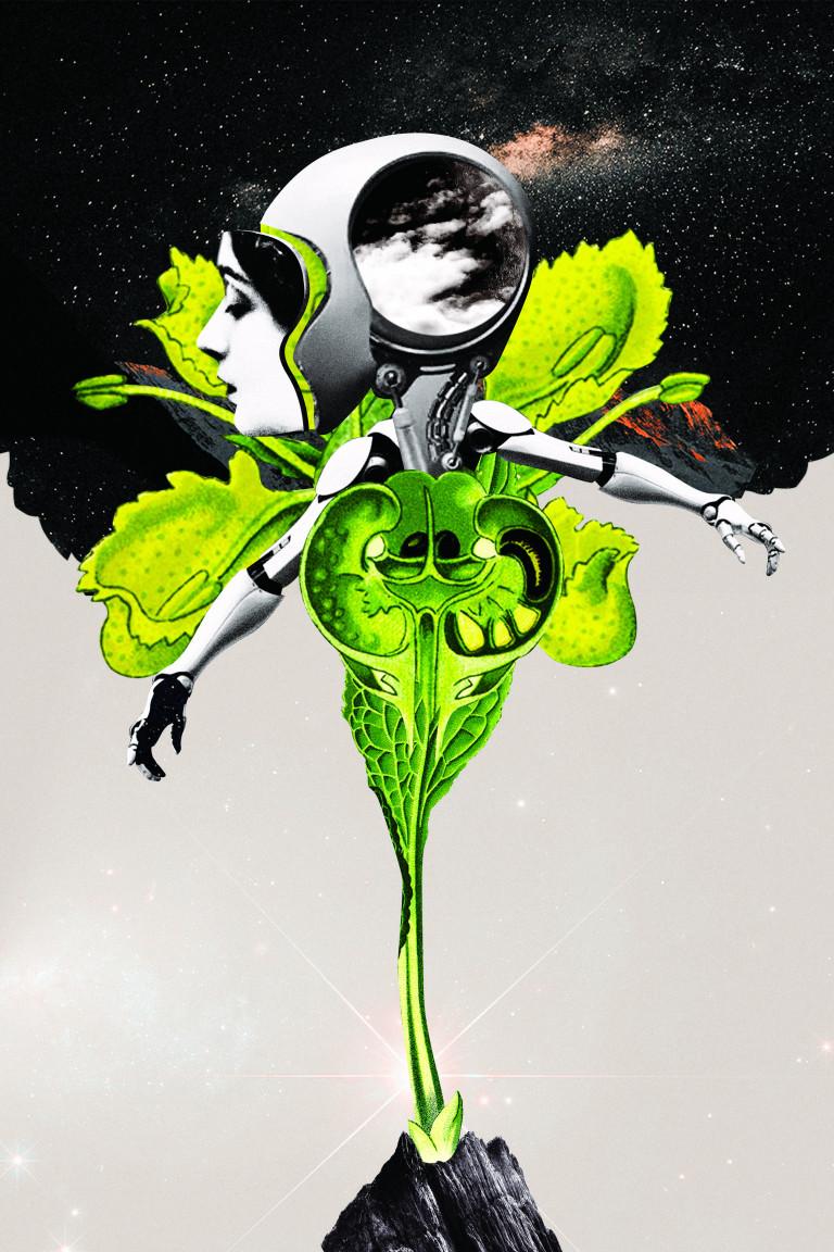 cyborg-femme