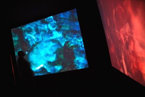 exposition La Chambre d'Images - Voiles d'araignée - Knud Viktor