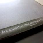 Stèle Binaire - David Guez